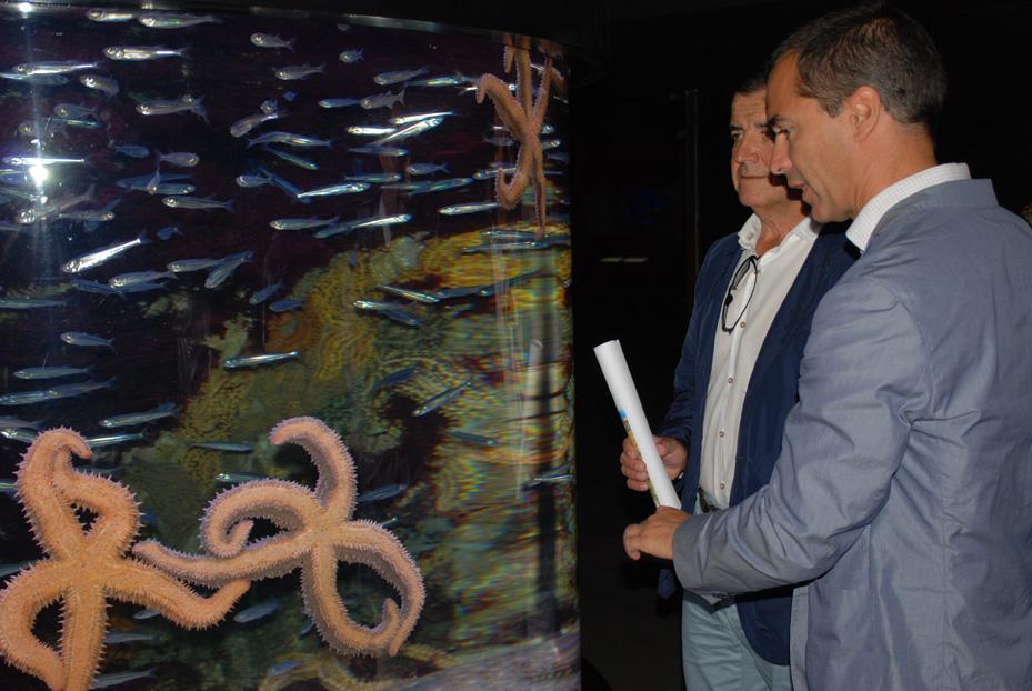 Nueva experiencia Crusoe Treasure en Aquarium San Sebastián